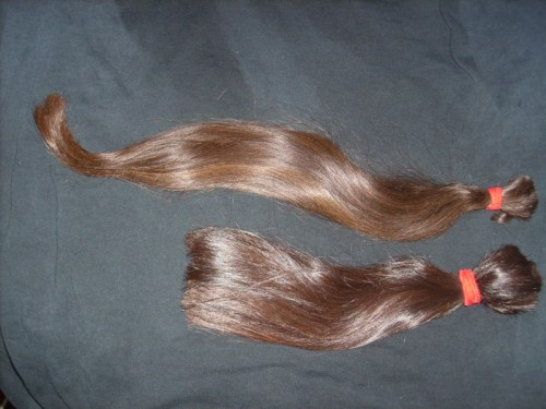"Gorgeous dark brown hair with red highlights, very healthy, 12"" and 18""."