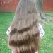 Hair1 (2)
