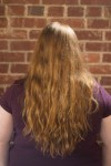 Back of hair, unbrushed, showing natural texture.