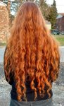 Virgin, Thick, Curly Red Hair for Sell