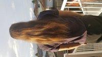 hairmula