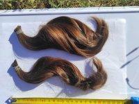 Photo 1 cheveux